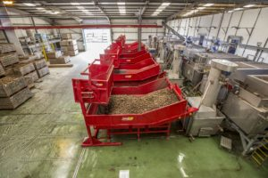 Vegetable Handling Products | Tong Engineering
