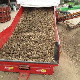 Caretaker Mobile Vegetable Sizer
