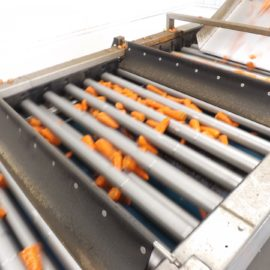 Tong rolls out cutting-edge technology to proven vegetable sizer