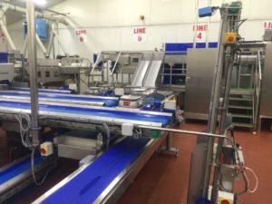Vegetable & Carrot Conveyor Machines | Tong Engineering Ltd