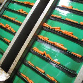 Crop Elevators