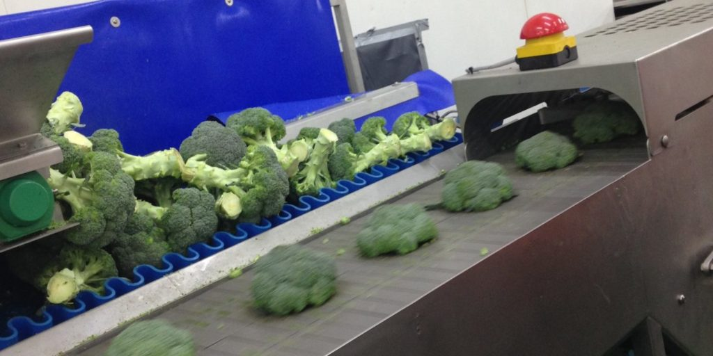 Tong Broccoli Trimmer Trimming Cutting Machine