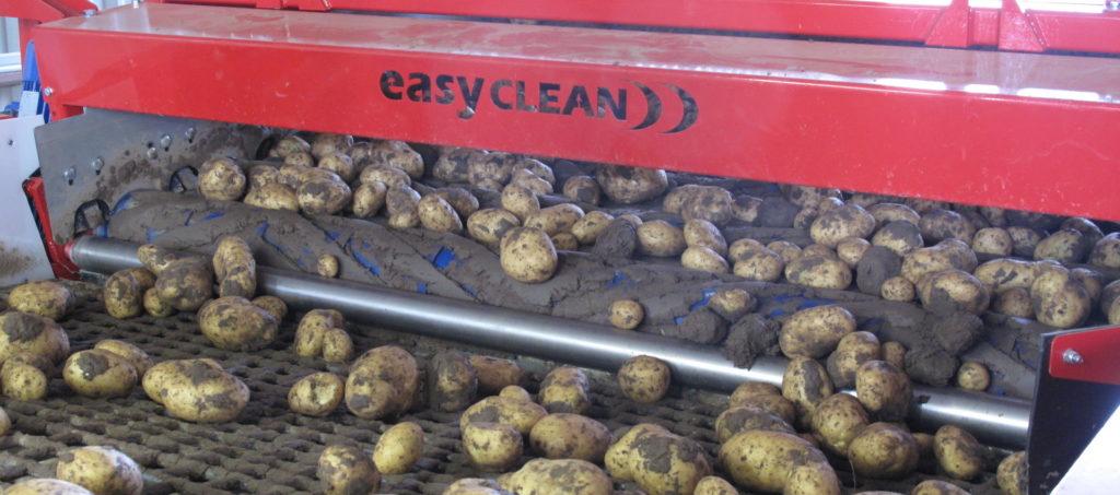 Potato Grading Caretaker Grader from Tong (3)