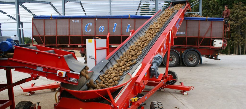 Potato Grading Bulker Elevator Loading