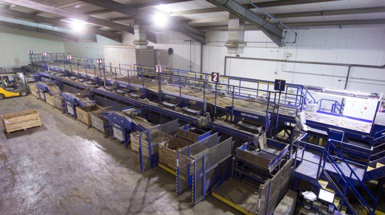 Potato Handling Line from Tong – Produce World UK