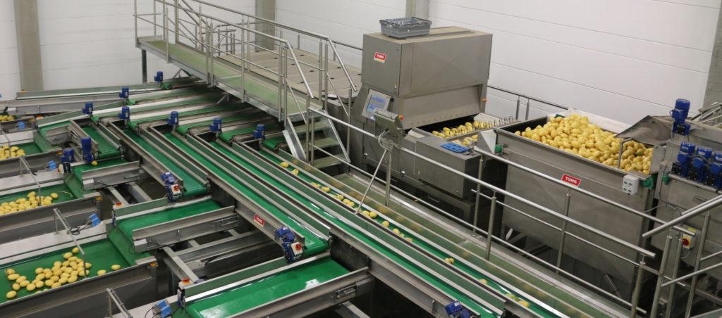 Tong Potato Washing Grading Optical Sorting Line
