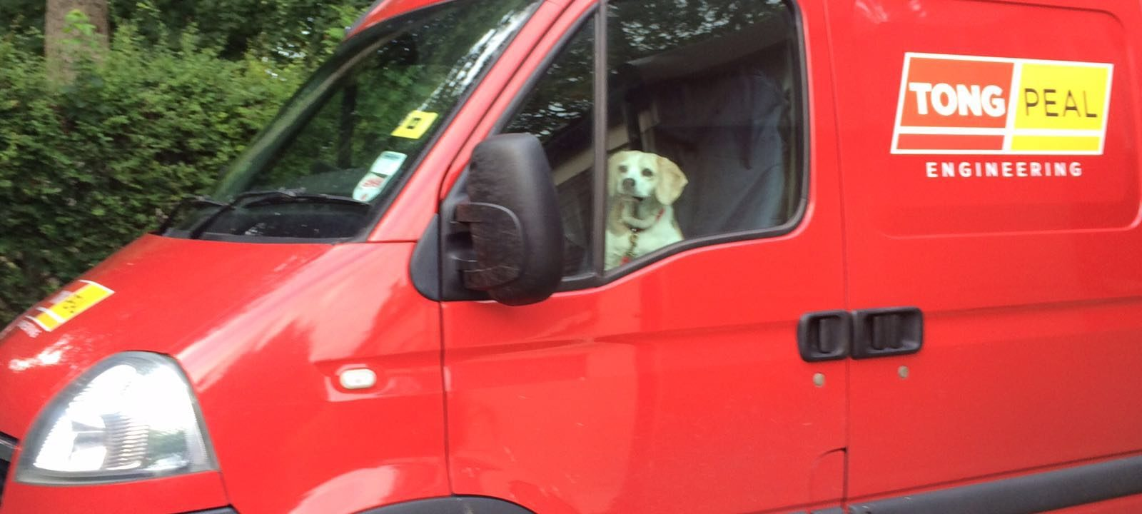Snoopy Tong Office Dog Beagle (2)
