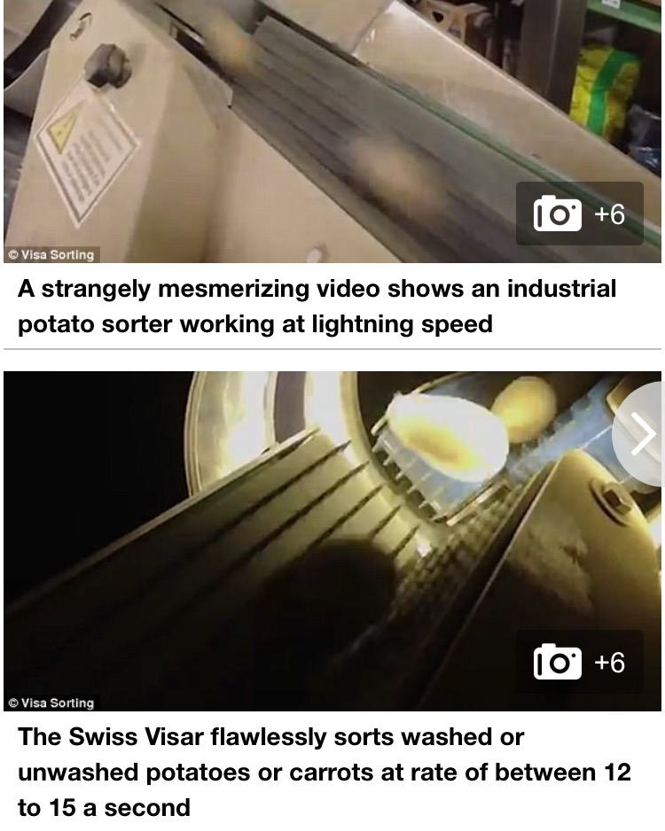 Daily Mail Visar Sortop Potato Optical Sorter Article (2)